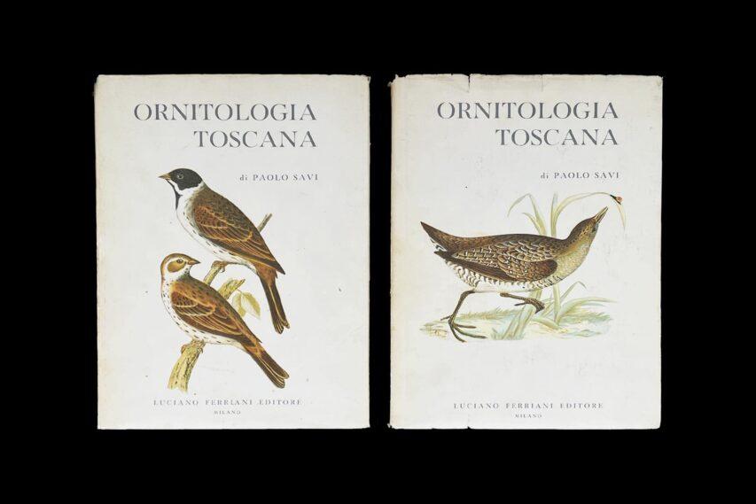 Sullo Scaffale #04: Ornitologia Toscana di Paolo Savi